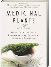Medicinal Plants at Home 100 Natural Remedies (pb) by Carlota Manez Ariso NEW