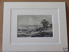 WEALD OF SUSSEX ANTIQUE MOUNTED ENGRAVING c1890 10X8