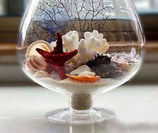 Decorative Wine Glass Vase Modern Unique Flower Transparent Clear Tabletop Decor