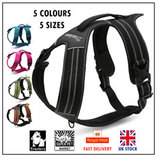 Genuine Truelove® No-Pull Strong Dog Harness Reflective XS S M L XL 5 Colours
