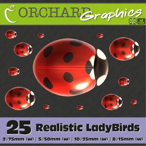 25 LadyBird Bug Car Stickers Vinyl Decals Graphics Bedroom Wall Art Realistic