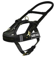 Dean Vest Harnesses and Tyler Guide Light Nickel Hardware Nylon Dog Harness -