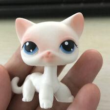 Littlest pet shop LPS  #64 Pink White Short Hair Cat lovely gift