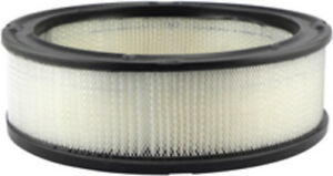 Air Filter Hastings AF278 #10-9B