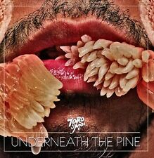 Toro y Moi - Underneath the Pine [New Vinyl]