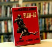 BLOW UP (1966) MICHELANGELO ANTONIONI David Hemmings DVD COME NUOVO
