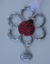 z Today is your lucky day Loving Little Ladybugs Ornament car charm ladybug
