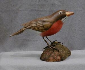 State Bird of Conneticut, Michigan & Wisconsin Robin