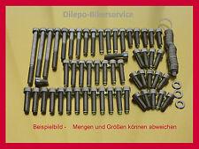 Kawasaki z1300/Z 1300-v2a tornillos tornillos acero inoxidable tornillos del motor