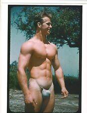 bodybuilder VIC SEIPKE 1955 AAU Jr. Mr America Bodybuilding Muscle Photo Color