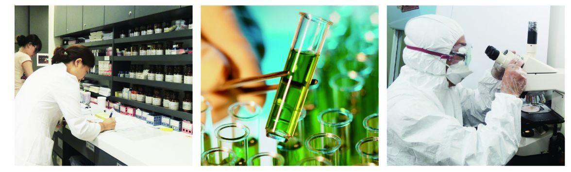 GREEN ENERGY NANO TECHNOLOGY CO LTD