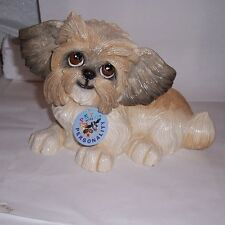 More details for pets with personality - her name is flo the shih tzu