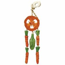 Rosewood Boredom Breaker Carrot Dream Catcher Toy For Rabbit Guinea Pigs Hamster
