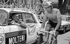 EDDY MERCKX TEAM MOLTENI TOUR DE FRANCE 1972 MAILLOT JAUNE POSTER
