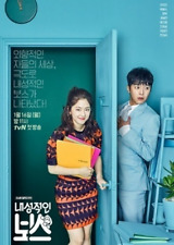 KOREAN DRAMA INTROVERTED BOSS Excellent ENGLISH SUBS
