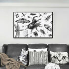 Black Insect Animal Life Canvas Print Poster Picture Wall Home Decor Art