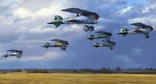 Jasta 5 'The Greentails' Limited Edition print Artist signed Albatros WW1 Aces