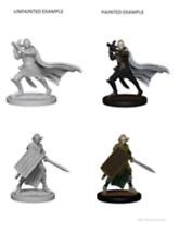 Pathfinder Unpainted Minis Wv2 Elf Male Paladin Miniatures NEW