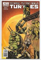 Teenage Mutant Ninja Turtles 3 A Dan Duncan Variant IDW 1st TMNT NM Eastman