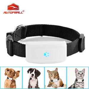 TKSTAR TK911 Mini GPS Tracker für Hunde Katzen Haustier W-lan GSM Wasserdicht