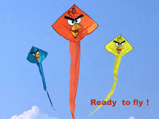 Vista Kite™ - Angry Birds
