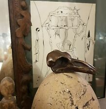 CRANE de CORBEAU en BRONZE Skull Cabinet de Curiosité RARE