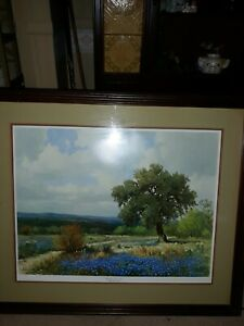 Vintage Oil Print BLUE BONNETS SIGNED BY Porfirio Salinas and dated 1958