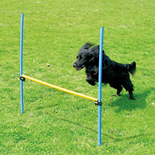 PAWISE Pet Dogs Outdoor Games Agility Exercise Training Equipment Pet Training