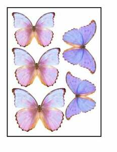 Edible Pre-Cut Wafer Butterfly - Extra Large Pink and Purple