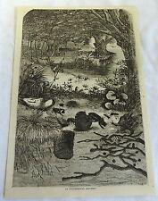 1883 magazine engraving ~ Underground Ant-Nest