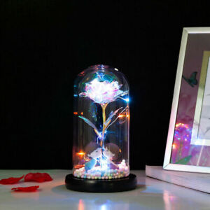 Galaxy Eternal Flower Rose in Glass Light Up Enchanted Dome Lamp Christmas Gift