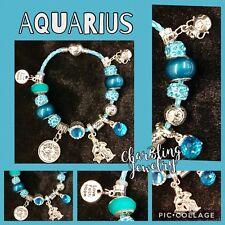 Astrology/Zodiac European Charm Bracelet-Aquarius