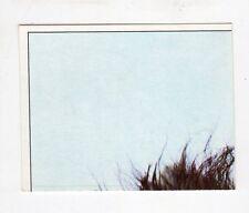 figurina - PANINI PINOCCHIO 1972 - numero 131