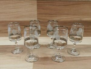 6 x Dema Small Sherry Glasses with Etched Roses, Silver Band and Rim.