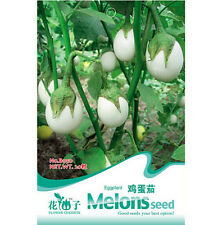 20 Seeds Hot White Eggplant Seed Vegetable Seeds ~1 Pack 20 Seeds~ Free Shipping