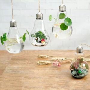 2 PCS Large&small Golden Light Bulb Hanging Plant Glass Vase Home Deco