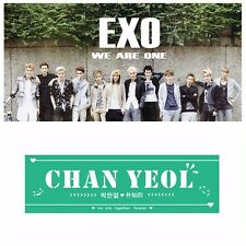 KPOP EXO CHANYEOL Hand Banner Non-woven Green Fans Support Gift New