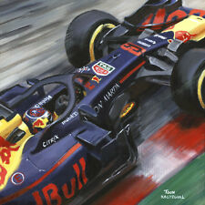 Litho 2018 Red Bull Racing RB14 #33 Max Verstappen (NED) by Toon Nagtegaal (OE)