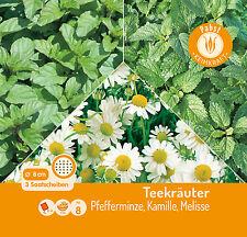 Teekräuter - Pfefferminze Kamille Melisse 156211 Saatgut Saatscheibe Sämereien