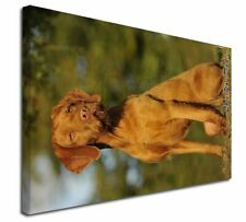 More details for wirehaired vizsla 'love you dad' x-large 30
