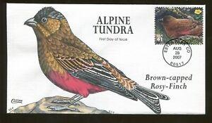2007 - Estes Park Colorado - Alpine Tundra - Brown-capped Rosy Finch Collins FDC