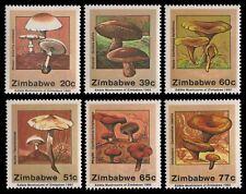 Simbabwe 1992 - Mi-Nr. 476-481 ** - MNH - Pilze / Mushrooms
