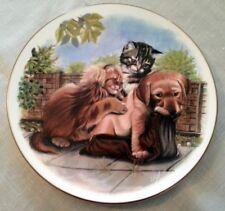 datazione Royal Staffordshire ceramiche