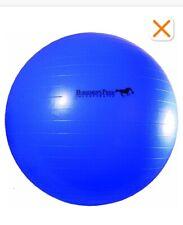 Horsemen's Pride Jolly Mega Ball Blue 30 Inch
