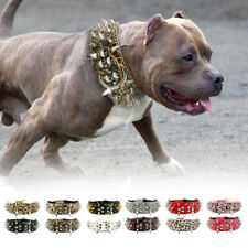 5cm Wide Sharp Spikes Studded Leather Medium Large Dog Collars Boxer Dobermans