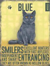 Gato Azul Colorido Metal Imán Nevera Letrero