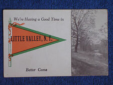 We're Having a Good Time in Little Valley NY/Trees-Stream/Pennant Postcard/1913
