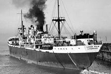 mc3099 - Palm Line Cargo Ship - Lagos Palm - photo 6x4