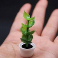 New 1/12 Green Plant in white pot Dollhouse Miniature Garden Accessory