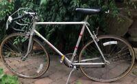 Schwinn World Sport Bicycle